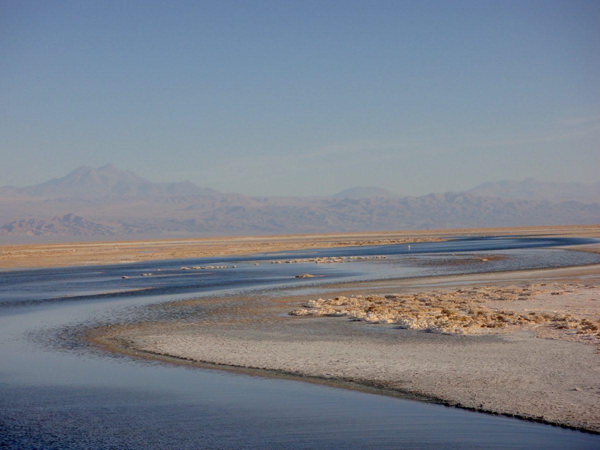 Salares e Lagoas Altiplanas, Deserto do Atacama